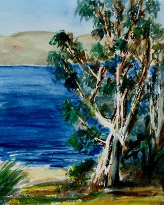 Lake Skinner View